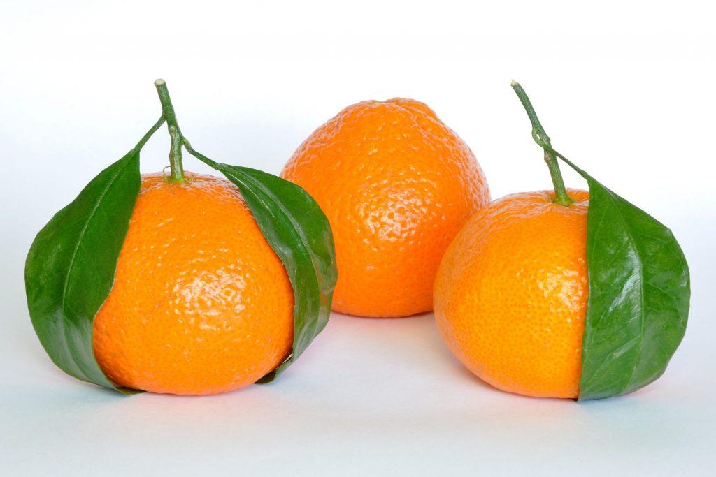 mandarin_oranges_citrus_reticulata