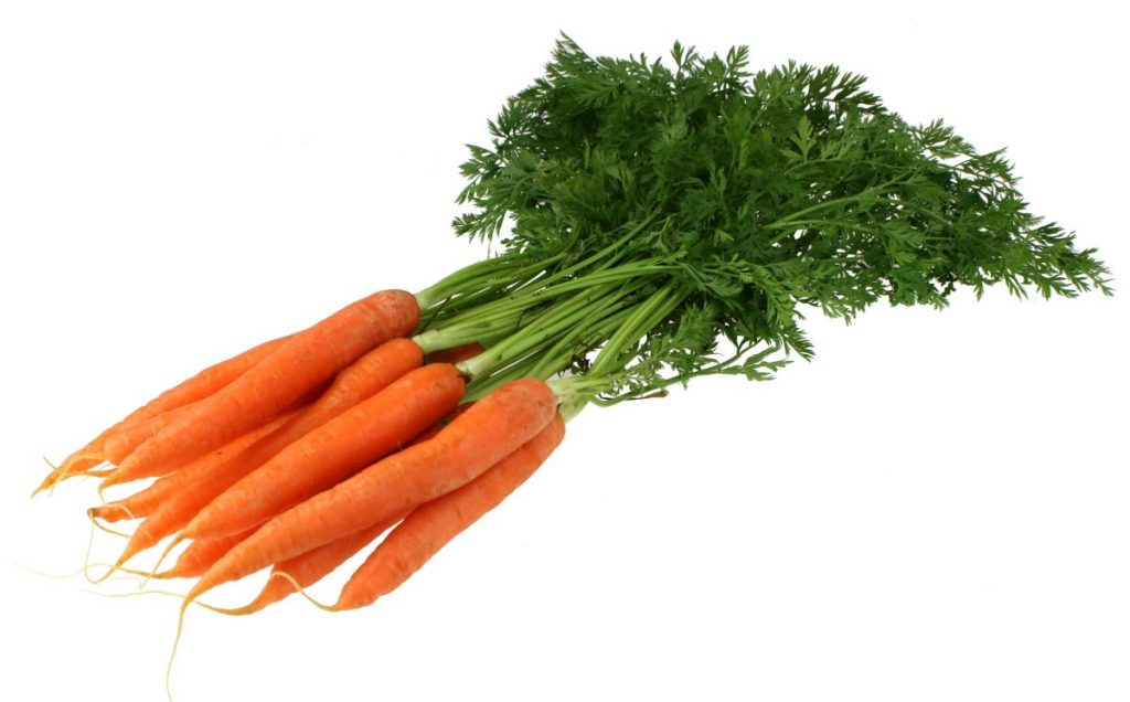 carrots-with-green