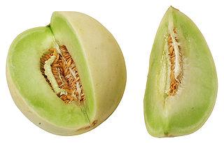 honeymelon