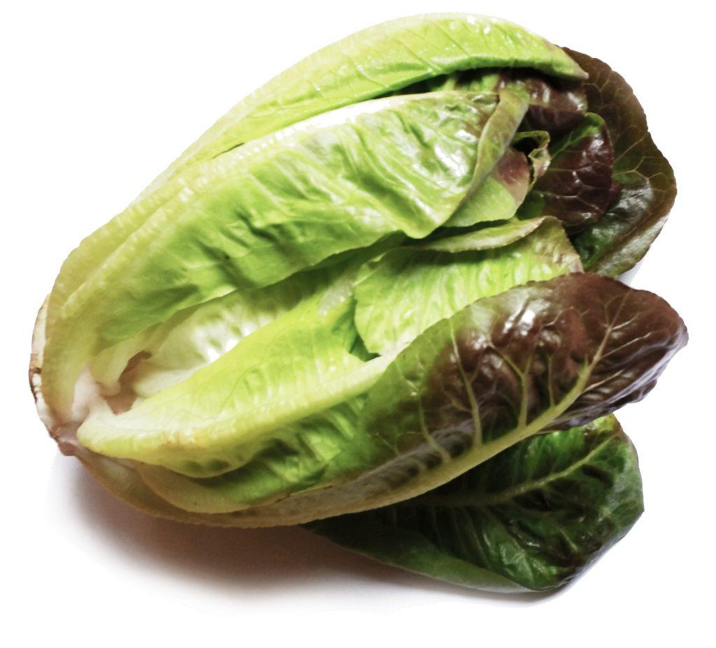 lettuce-heart