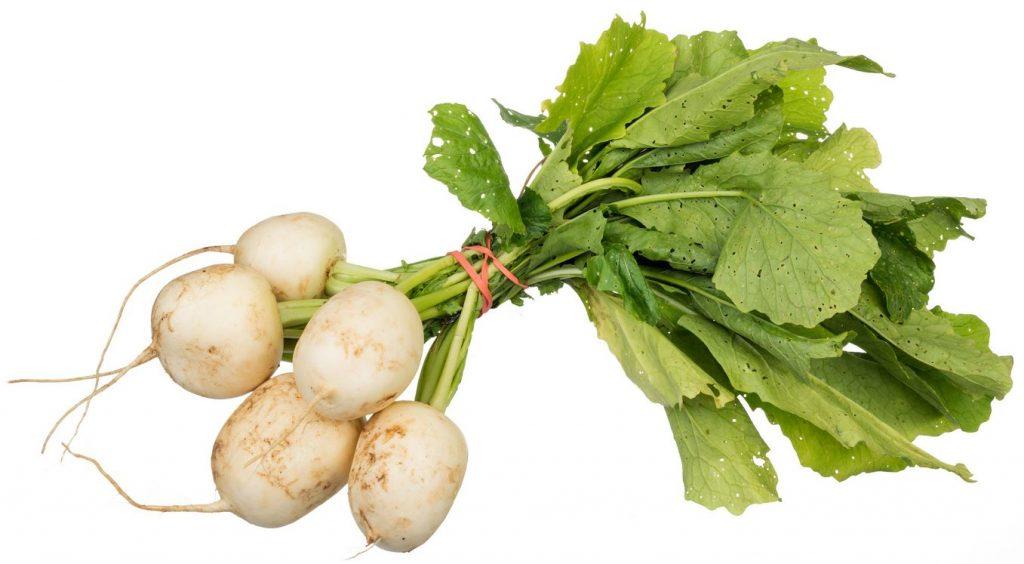 may-turnip