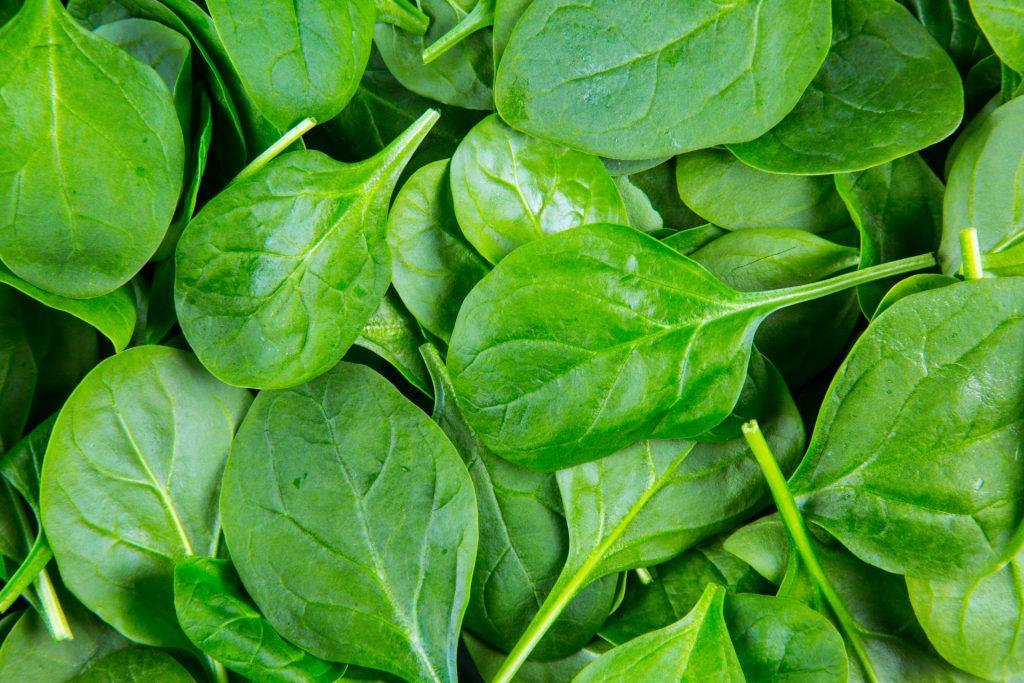 spinach-leaves-1461774375ktu